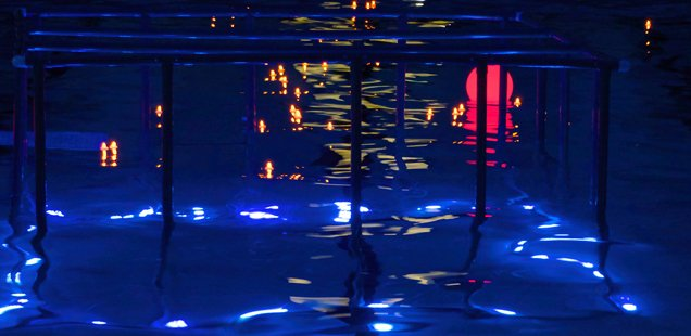 International things to do in london in july to do list for Imperial college london swimming pool
