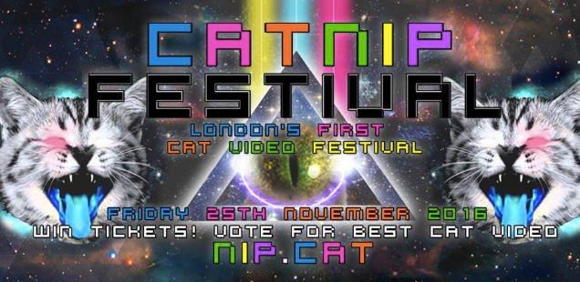 catnipfestival