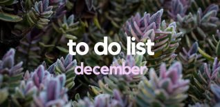 Things to Do in London in December 2016